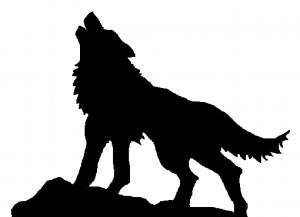 lobo-2